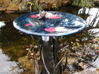 Water Lily Table